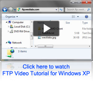 Weck Laboratories FTP Connected Window